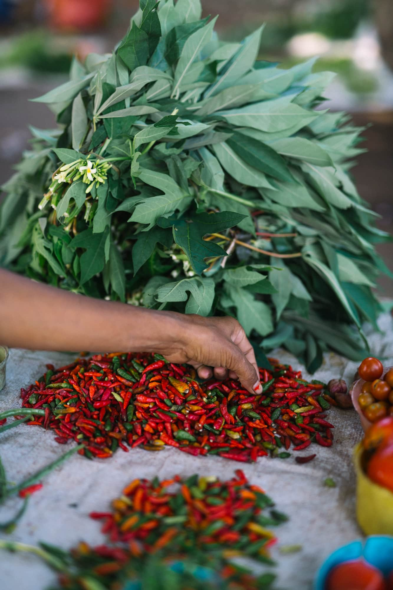 Traditional Cabai chili peppers at the market