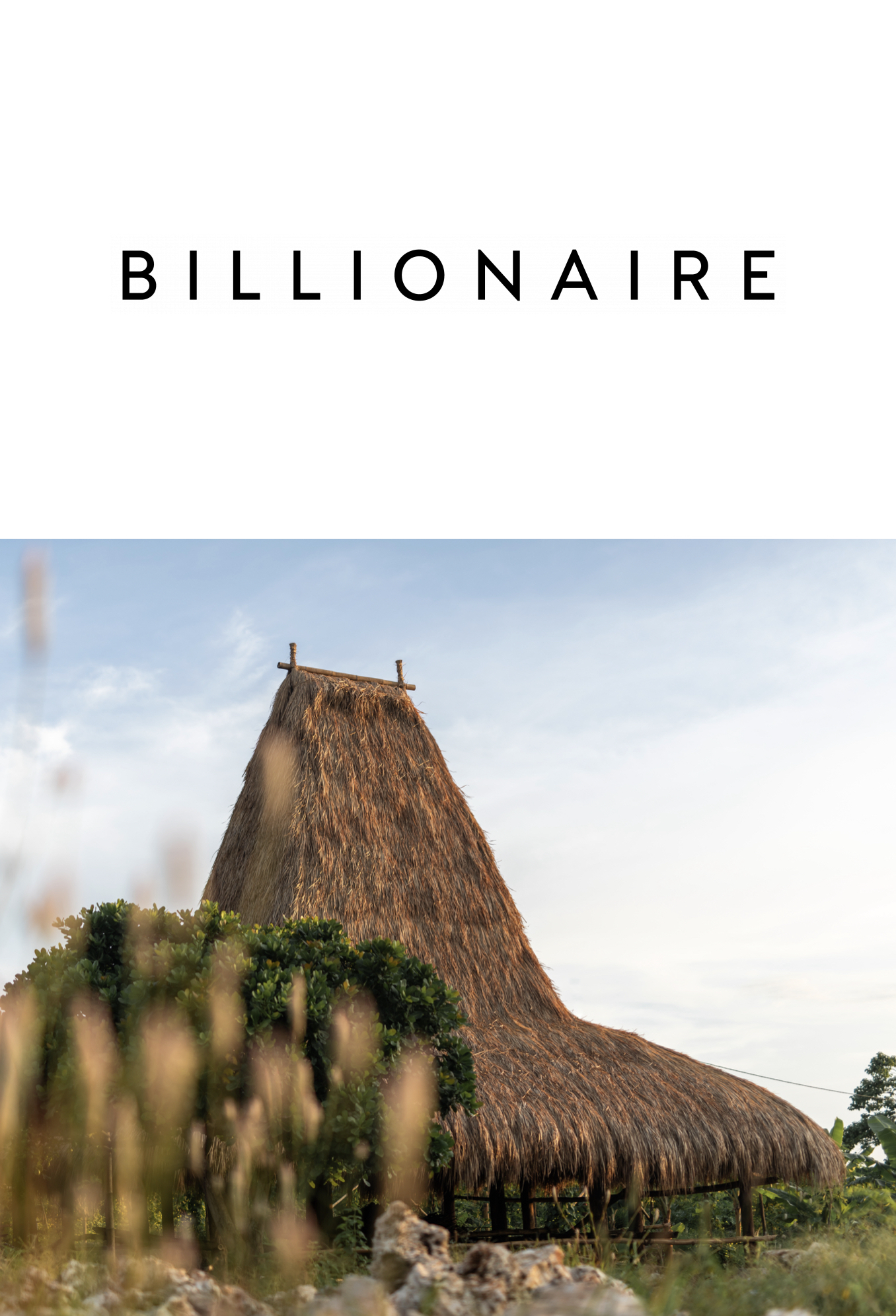 Billionaire Cover for Press Page with Community House picture